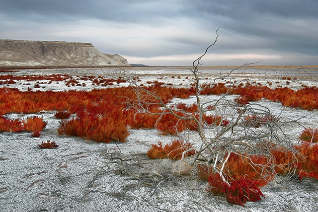 Aral_sea_image_01