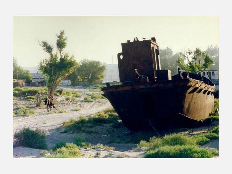 Aral_sea_image_03