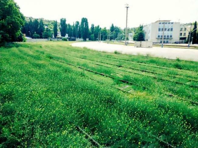 Крымская железная дорога зарастает травой
